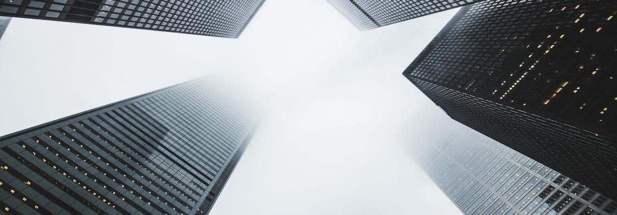 intouchCONSULT e.V. überzeugt DV Immobilien mit Interdisziplinarität und einem frischen Blick. Das Ergebnis: Eine herausragende Employer Branding Strategie