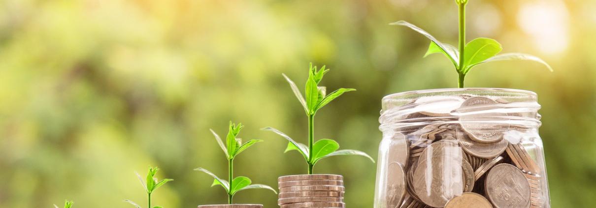 Nachhaltige Investitionen - Chance oder Risiko?