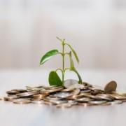 Nachhaltigkeit in der Finanzbranche - Ein fortwährender Trend