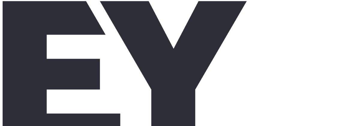 EY Ernst & Young - Die Management Beratung ist Kooperationspartner von intouchCONSULT